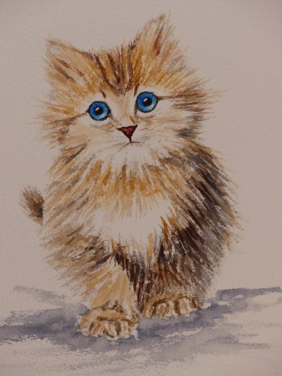 Mierion Hughes. Blue Eyes. Watercolour