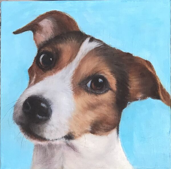 Jeni Taylor.  ''Pippin''   Oil on boxed canvas.    £35