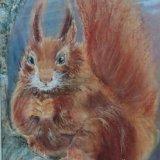 Red Squirrel.  Rosy Tuszynska