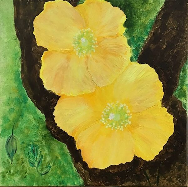 Patricia Davies. Welsh Poppies. Acrylic. 16x16 £25