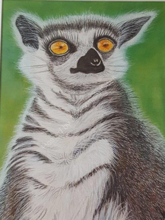 Linda Davies.      Here's Looking at You.       Pastel