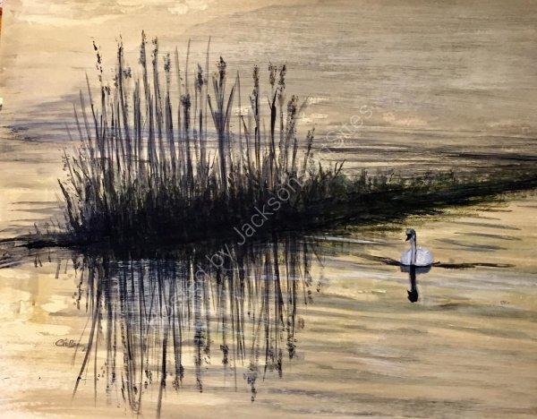Early Morning Swim.  Gill Benjamin