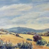 Summer View, Moel Famau.   Lynda Wilson