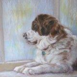 Dog in the Window.   Marjorie Scott.