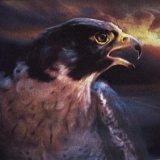 Eagle.  Jean Walker