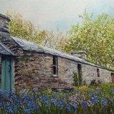 Blue Bell Cottage   Jackie Walton
