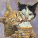 Cat's got the Cream .   Marjorie Scott