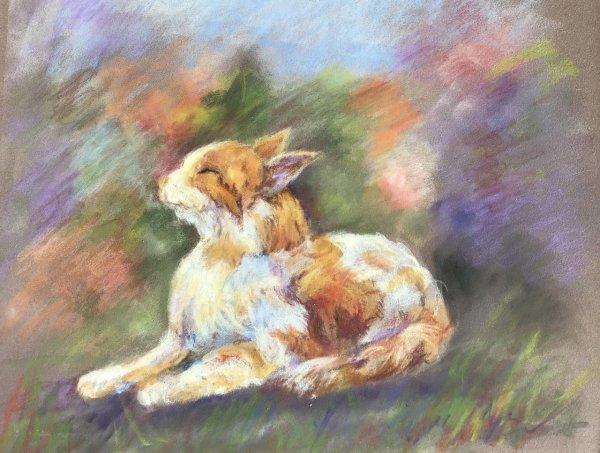 Marjorie Scott.  A Purrfect Day.  Pastel