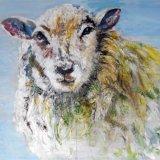 Mountain Sheep.  Barbara Ann Reynolds