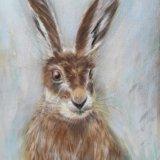Winter Hare.     Rosie Tuszynska