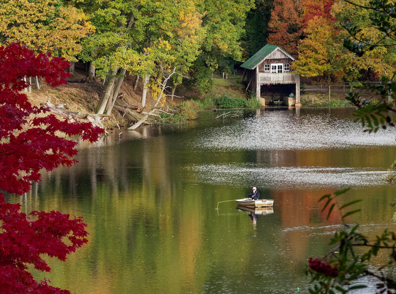 Autumn pastime