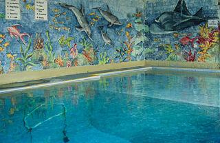 ov shop pool