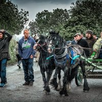 Dealers showing their stock- Appleby Horse Fair 2014