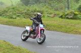DSC 0128a Autumn Speed Finale 20th September 2014