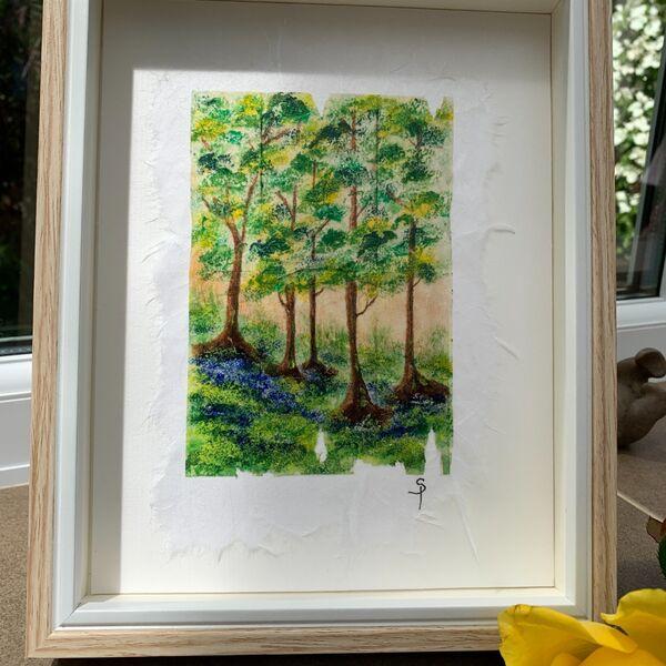 Bluebell Wood 3