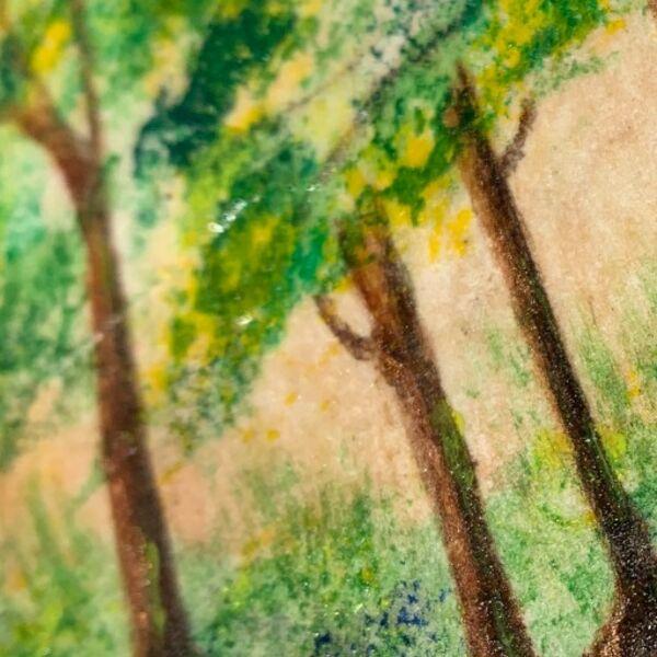 Bluebell Wood 6