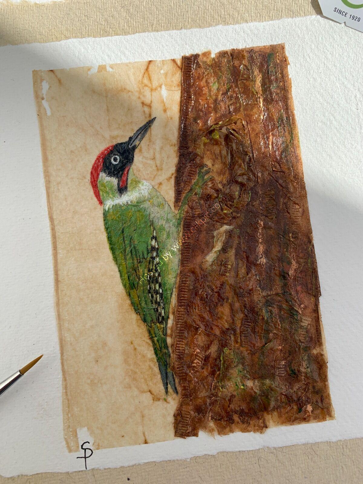Green Woody Woodpecker - Tea Bag Art
