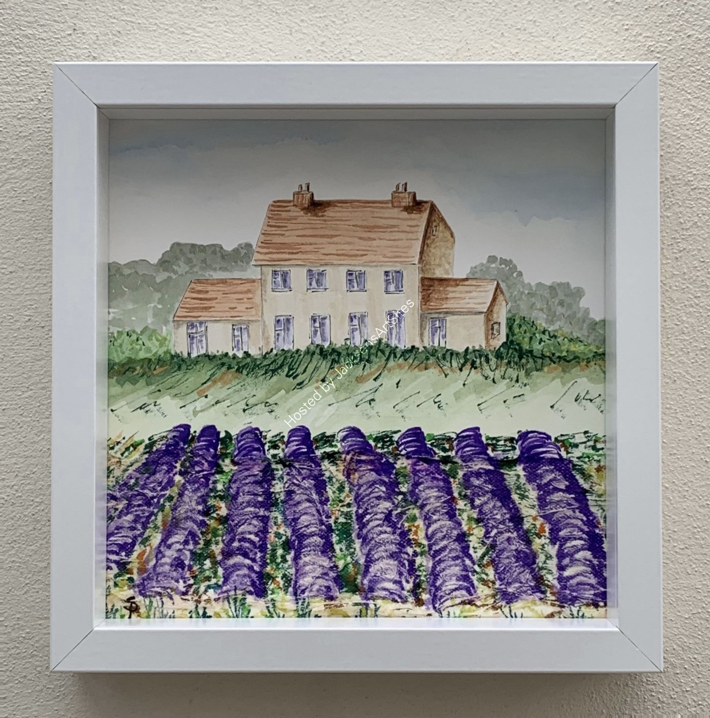 'Snowshill Farm' Lavender Fields Framed