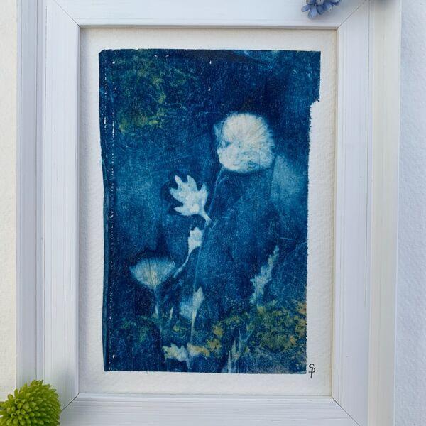 Mini Crysanthemum Framed