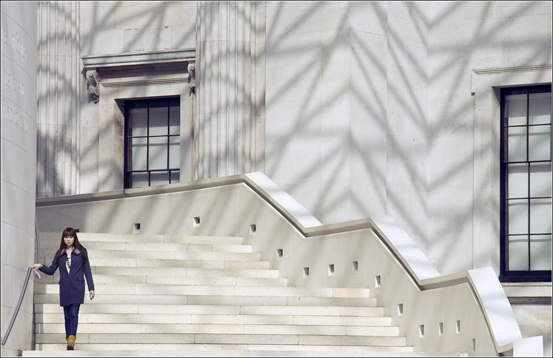 DESCENDING THE STAIRS