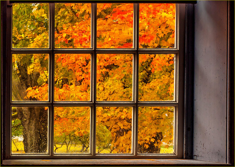 Fall through the Shakers' window
