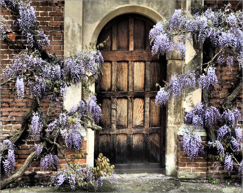 TEXTURED DOOR