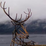 Life size stag