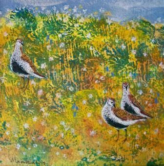 Three Golden Plovers