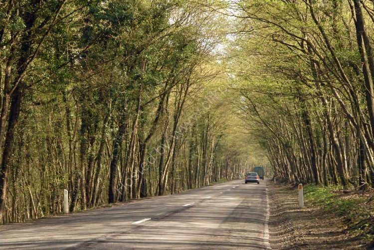 BELGIUM - Driving through the Ardennes