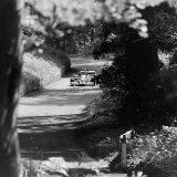 Doune Hill Climb - (24 June, 1979) Martyn Griffiths (Pilbeam) just after Garden Gate