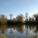 ENGLAND - Reflections of Upper North Pond, near Shillinglee, Low Weald, Surrey