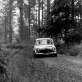 Hackle Rally - Charlie Bruce Miller (Mini Cooper S) on the Craigvinean Stage