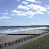 SCOTLAND - Aberdeen Bay - on a Flag Day ....
