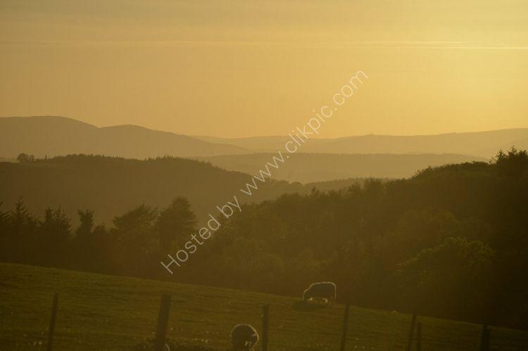 SCOTLAND - Aberdeenshire Summer Evening amid rolling hills