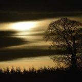 SCOTLAND - Eerie Sunset