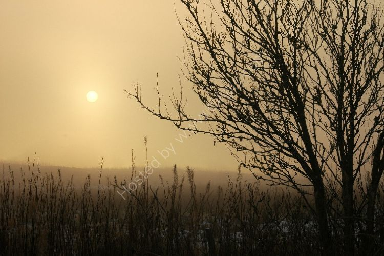 Winter - Impending Blizzard beginning to blot out the sun