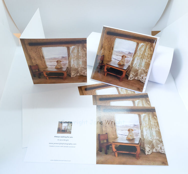 Pack of 5 Blank Greetings cards, 'Always waiting for you'