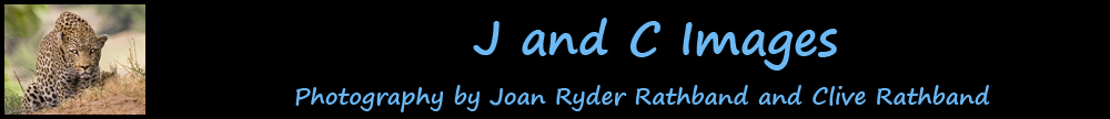J and C IMAGES - Joan Ryder and Clive Rathband