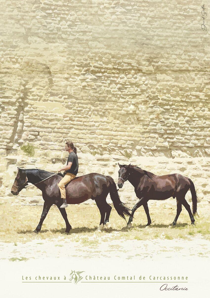 Horses, Carcassonne