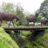 3 Billy Goats Gruff   (6)