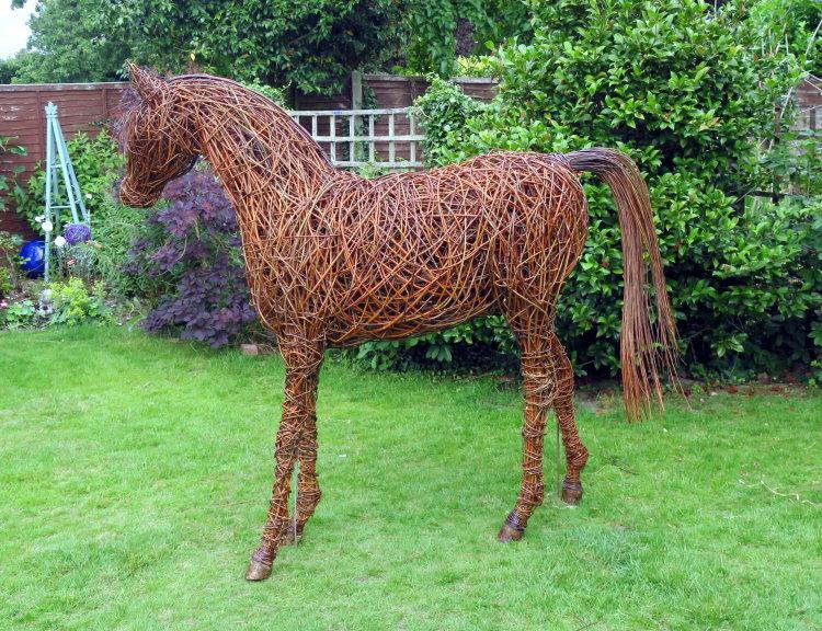 Arabian horse (7)