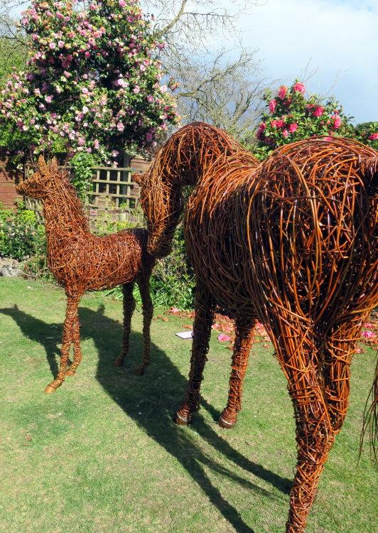 Arabian Mare & Foal (2)