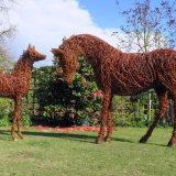 Arabian Mare & Foal (4)