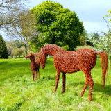 Arabian Mare & Foal (6)