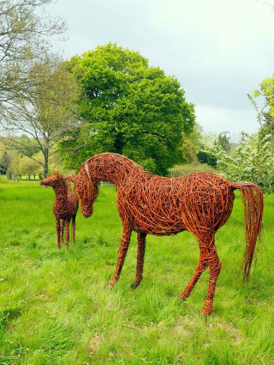 Arabian Mare & Foal - Hillier Gardens
