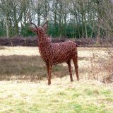 Deer Lindow Common (4)