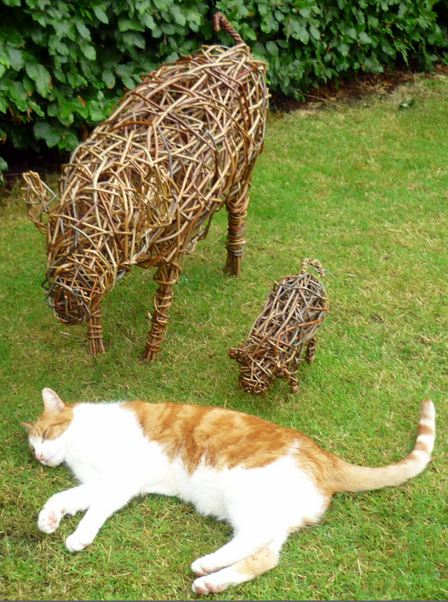 Ginger cat and pigs