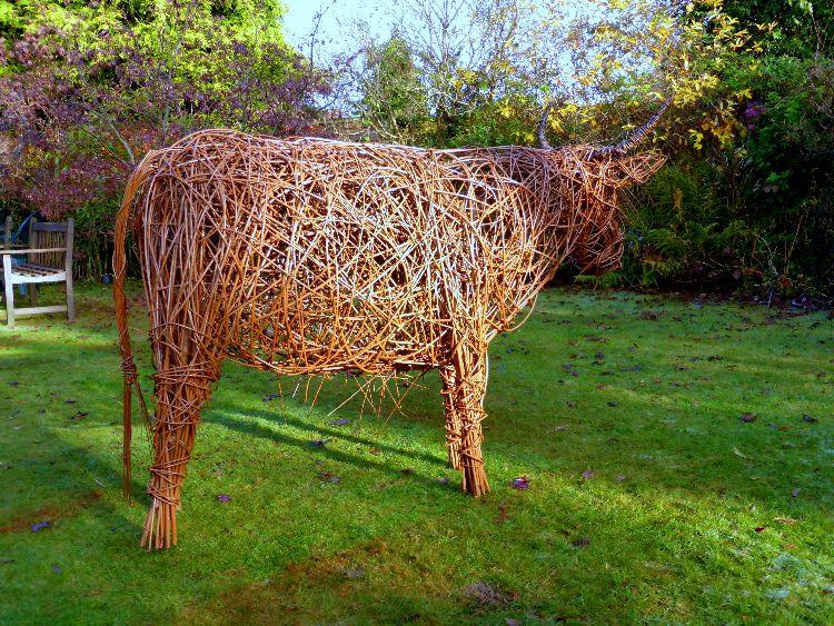 Highland Cow  (2)