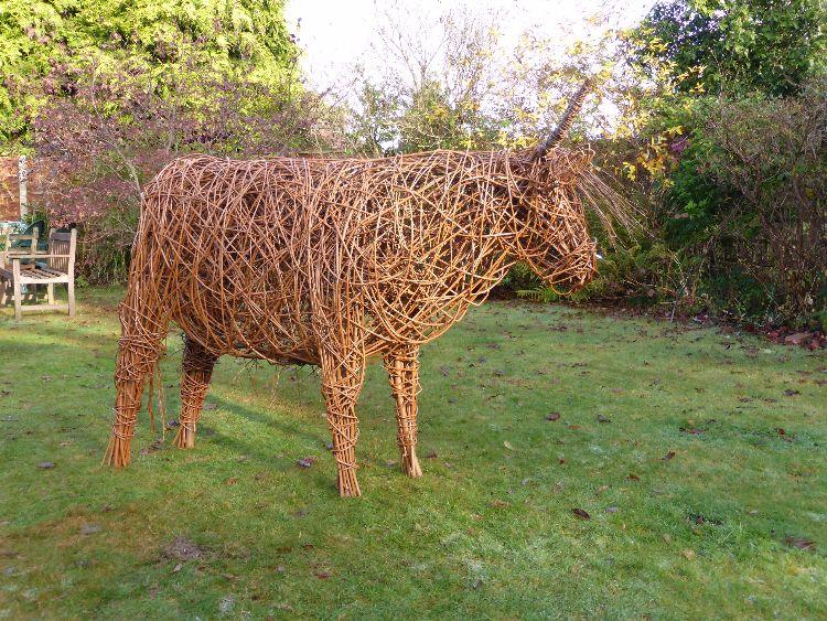 Highland Cow  (5)