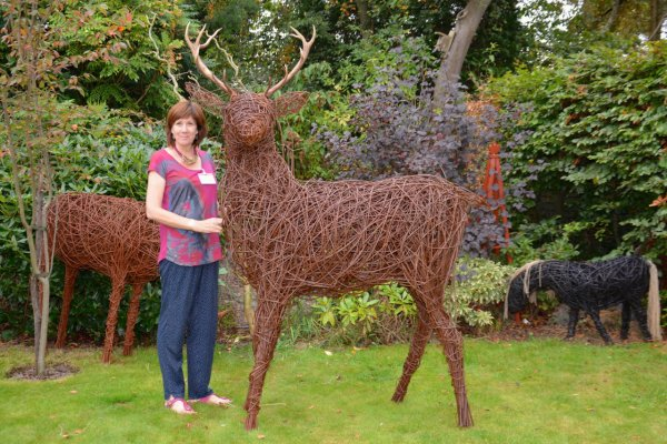 Red deer stag - Jane is 5 foot 12 inches